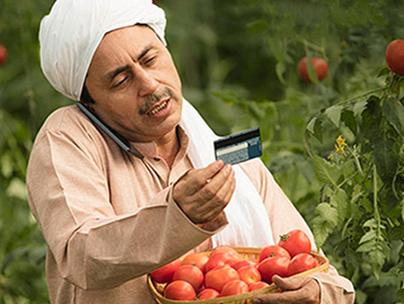 CDFI Agri Business Develop